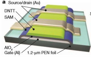 薄膜电晶体(TFT)的主要材料,相对于传统电晶体多用矽,这里主要使用DNTT(一种有机化合物)[注1]图/Kaltenbrunner et al , 2013