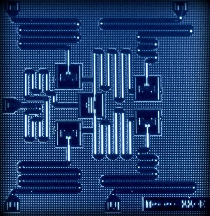 IBM5位元的量子晶片