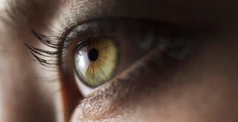 科学家发现,人类眼中的角膜组织可能对新型冠状病毒具有抵抗性缩略图