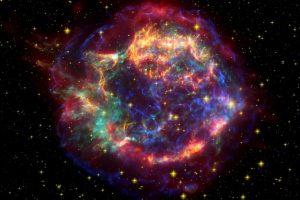 古代树木的年轮可能蕴藏着超新星爆发的秘密缩略图