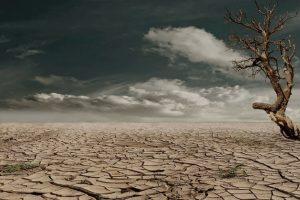 地球因气候变化可能将面临人类史上持续最久的干旱现象缩略图
