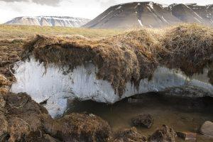 北极地区的永冻层逐渐溶解,释放出致命古老微生物缩略图