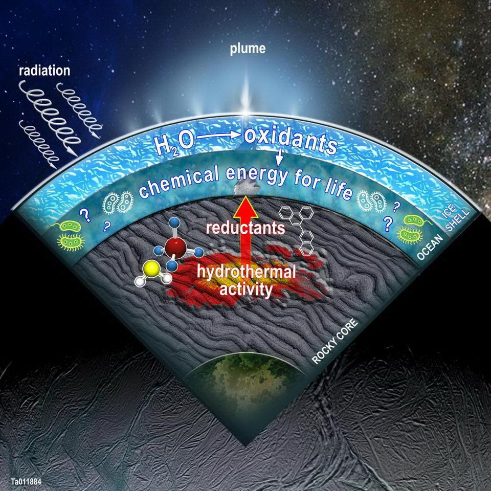 该图显示了土卫二的横截面,显示了科学家在土卫二中建模的一些发现。当水分子被辐射分解时,表层冰中产生的氧化剂可与热液活动和其他水-岩石反应产生的还原剂结合,从而为海洋中的潜在生命提供能源。