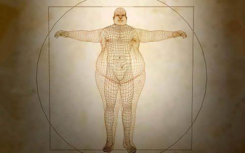 科学家发现肥胖基因ALK:抑制它就能减肥