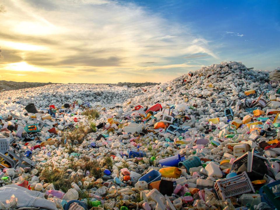 地球上人类制造出来的物质总量超过了生物质量之和