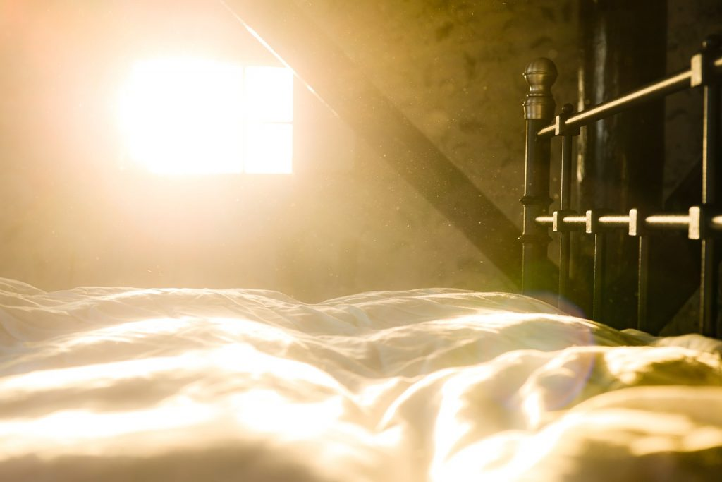 """冬天晒完被子有""""阳光的味道"""",这个阳光的味道到底是啥?插图"""