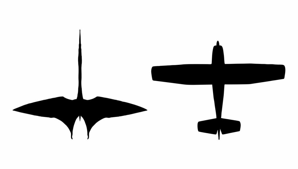 风神翼龙究竟有多大,给你看一张图直观感受下插图2