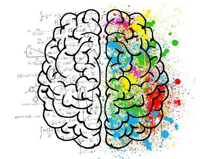 大脑是如何记住正确的地点和时间的?大脑甚至还能提前预测即将发生的事件